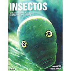 Insectos: Extraordinárias Imagenes de Criaturas Fascinantes