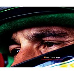 Ayrton Senna: Livro Agenda Permanente