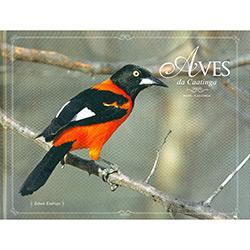 Aves da Caatinga: Edição Bilíngue - Português/inglês