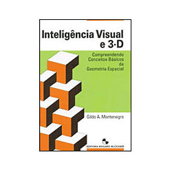 Inteligencia Visual e 3-d