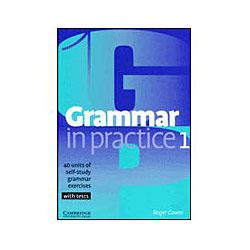 Grammar In Practice 1