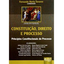 Constituicao, Direito e Processo - Principios Constitucionais do Processo
