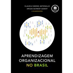 Aprendizagem Organizacional no Brasil