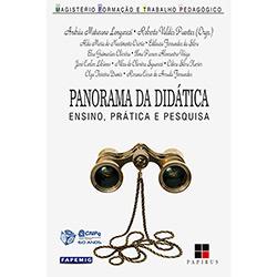 Panorama da Didática: Ensino, Prática e Pesquisa