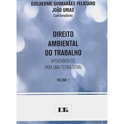 Direito Ambiental do Trabalho: Apontamentos para uma Teoria Geral - Vol.1