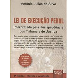 Lei de Execucao Penal - Interpretada pela Jurisprudencia dos Tribunais de J