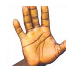 Coleção Angola Xxi - Salvador Negroamor