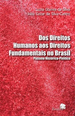 Direitos Humanos aos Direitos Fundamentais no Brasil, Dos