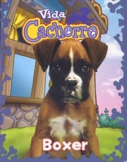Mini Livros: Vida de Cachorro - Boxer