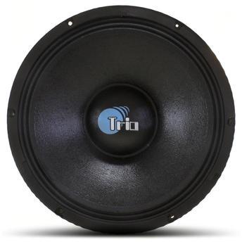 Alto-falante Spyder 300 W Rms 12ts300