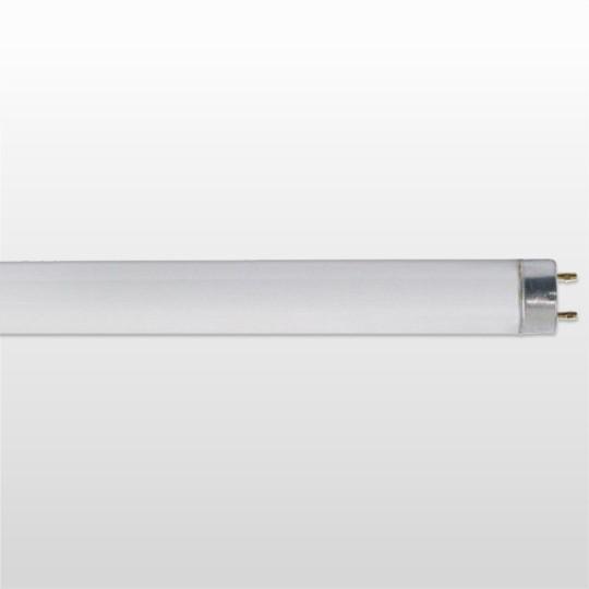 Lâmpada Taschibra Fluorescente T8 G13 18w 6400k Bivolt - 7897079042580