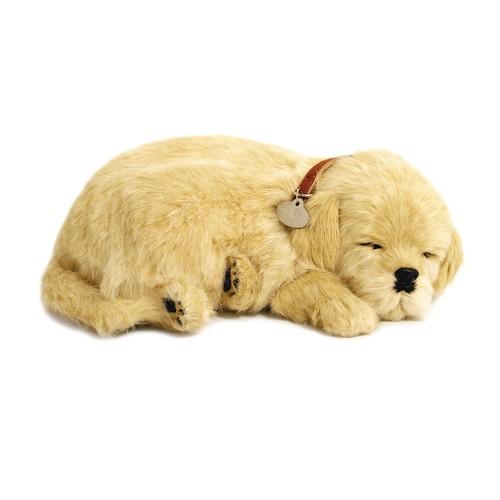 Pelúcia Cachorro Labrador Perfect Petzzz